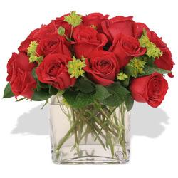 Antalya Melisa çiçekçi telefonları  10 adet kirmizi gül ve cam yada mika vazo