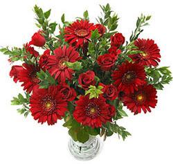 5 adet kirmizi gül 5 adet gerbera aranjmani  Antalya Melisa hediye çiçek yolla