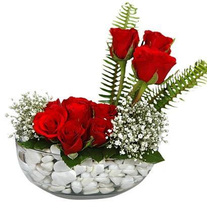 cam içerisinde 9 adet kirmizi gül  Antalya Melisa çiçek siparişi vermek