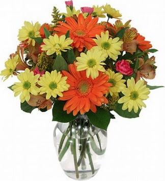 Antalya Melisa hediye sevgilime hediye çiçek  vazo içerisinde karışık mevsim çiçekleri