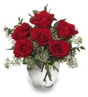 Vazo içerisinde 5 adet kırmızı gül  Antalya Melisa çiçekçi mağazası