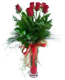vazo içerisinde 5 kırmızı gül  Antalya Melisa güvenli kaliteli hızlı çiçek