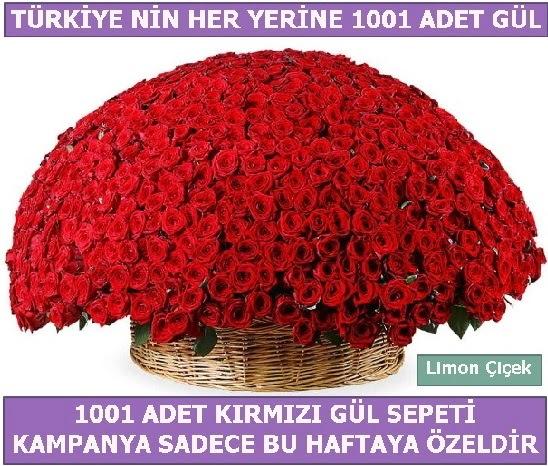 1001 Adet kırmızı gül Bu haftaya özel  Antalya Melisa Melisa İnternetten çiçek siparişi