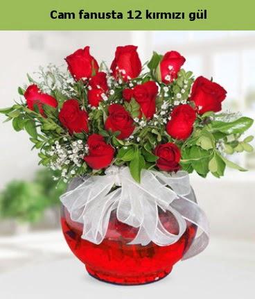 Cam içerisinde 12 adet kırmızı gül  Antalya Melisa internetten çiçek satışı