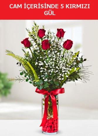 Cam içerisinde 5 adet kırmızı gül  Antalya Melisa çiçek siparişi sitesi