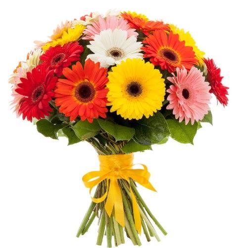 Gerbera demeti buketi  Antalya Melisa çiçek satışı
