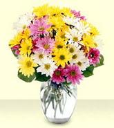 Antalya Melisa internetten çiçek siparişi  mevsim çiçekleri mika yada cam vazo