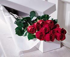Antalya Melisa çiçek satışı  özel kutuda 12 adet gül