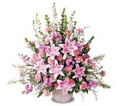 Antalya Melisa çiçek siparişi sitesi  Tanzim mevsim çiçeklerinden çiçek modeli