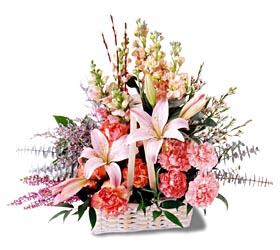 Antalya Melisa çiçek siparişi sitesi  mevsim çiçekleri sepeti özel tanzim