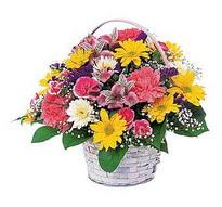 Antalya Melisa çiçek , çiçekçi , çiçekçilik  mevsim çiçekleri sepeti özel
