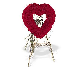 Antalya Melisa internetten çiçek satışı  karanfillerden kalp pano