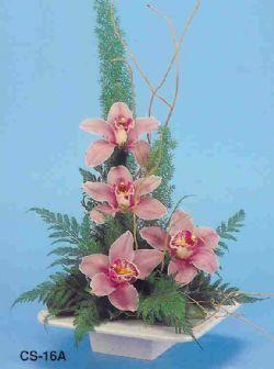 Antalya Melisa çiçekçi telefonları  vazoda 4 adet orkide