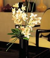 Antalya Melisa çiçekçiler  cam yada mika vazo içerisinde dal orkide