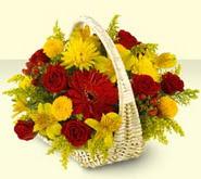 Antalya Melisa 14 şubat sevgililer günü çiçek  sepette mevsim çiçekleri