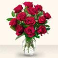 Antalya Melisa çiçek yolla  10 adet gül cam yada mika vazo da