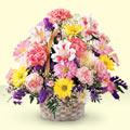 Antalya Melisa uluslararası çiçek gönderme  sepet içerisinde gül ve mevsim
