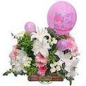 balon ve çiçeklerle tanzim  Antalya Melisa internetten çiçek satışı