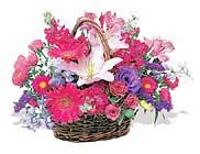 küçük karisik özel sepet   Antalya Melisa çiçek online çiçek siparişi