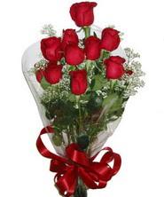9 adet kaliteli kirmizi gül   Antalya Melisa online çiçekçi , çiçek siparişi