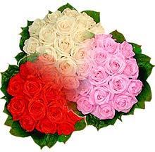 3 renkte gül seven sever   Antalya Melisa çiçek , çiçekçi , çiçekçilik