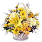 sadece sari çiçek sepeti   Antalya Melisa çiçek gönderme sitemiz güvenlidir