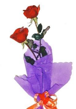 2  adet kirmizi gül buketi   Antalya Melisa çiçek , çiçekçi , çiçekçilik