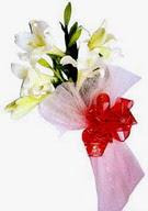 Antalya Melisa çiçek , çiçekçi , çiçekçilik  ince vazoda gerbera ve ayi