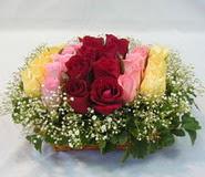 15 adet reprenkli gül sepeti   Antalya Melisa çiçek yolla