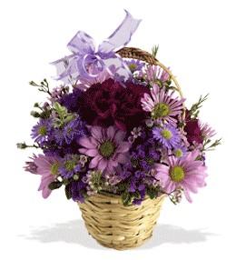 Antalya Melisa uluslararası çiçek gönderme  sepet içerisinde krizantem çiçekleri
