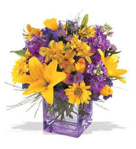 Antalya Melisa çiçek mağazası , çiçekçi adresleri  cam içerisinde kir çiçekleri demeti
