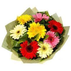 9 adet karisik gerbera demeti  Antalya Melisa çiçek mağazası , çiçekçi adresleri