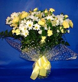 Antalya Melisa hediye çiçek yolla  sade mevsim demeti buketi sade ve özel
