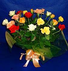 Antalya Melisa hediye çiçek yolla  13 adet karisik renkli güller