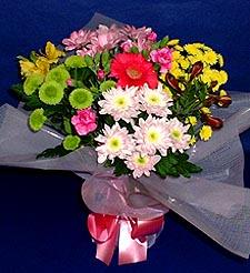 Antalya Melisa hediye çiçek yolla  küçük karisik mevsim demeti