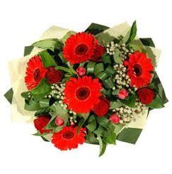 Antalya Melisa ucuz çiçek gönder   5 adet kirmizi gül 5 adet gerbera demeti