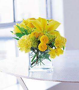 Antalya Melisa ucuz çiçek gönder  sarinin sihri cam içinde görsel sade çiçekler