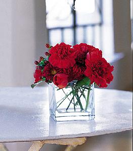 Antalya Melisa ucuz çiçek gönder  kirmizinin sihri cam içinde görsel sade çiçekler