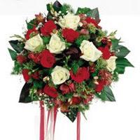 Antalya Melisa ucuz çiçek gönder  6 adet kirmizi 6 adet beyaz ve kir çiçekleri buket