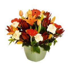 mevsim çiçeklerinden karma aranjman  Antalya Melisa çiçek yolla , çiçek gönder , çiçekçi