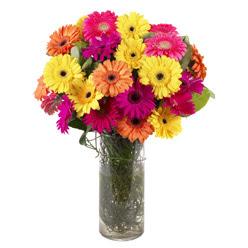 KARISIK GERBERALARDAN CAM VAZO TANZIMI  Antalya Melisa güvenli kaliteli hızlı çiçek