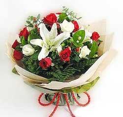 güller ve kazablanklardan görsel bir buket  Antalya Melisa internetten çiçek satışı
