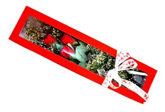 Antalya Melisa hediye çiçek yolla  Kutuda 3 adet gül
