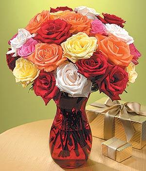 Antalya Melisa anneler günü çiçek yolla  13 adet renkli gül