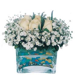 Antalya Melisa çiçekçi mağazası  mika yada cam içerisinde 7 adet beyaz gül