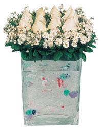 Antalya Melisa çiçekçi mağazası  7 adet beyaz gül cam yada mika vazo tanzim