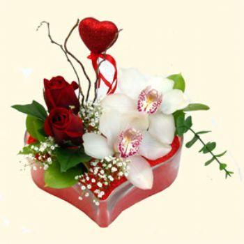 Antalya Melisa hediye sevgilime hediye çiçek  1 kandil orkide 5 adet kirmizi gül mika kalp