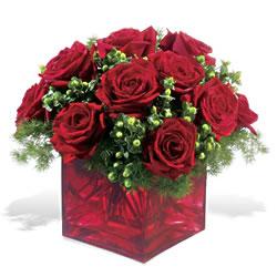 Antalya Melisa çiçek yolla  9 adet kirmizi gül cam yada mika vazoda