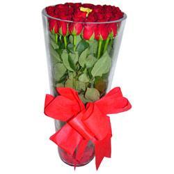 Antalya Melisa çiçek online çiçek siparişi  12 adet kirmizi gül cam yada mika vazo tanzim