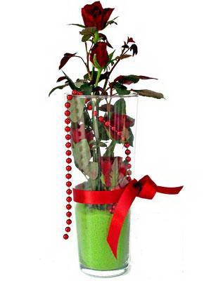 Antalya Melisa online çiçek gönderme sipariş  Cam yada mika içerisinde 9 adet kirmizi gül - sevdiklerinize özel
